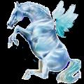Riding pegasus Paint Horse Dark bay Tobiano