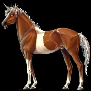Riding unicorn Arabian Horse Cherry bay