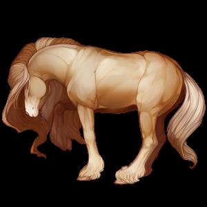 Draft horse Percheron Light Gray
