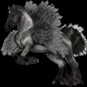 Ponypegas Velšský kůň Smíšený bělouš