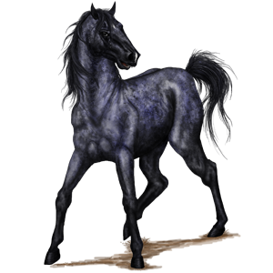 Pegasus-Pony Shetlandpony Falbe