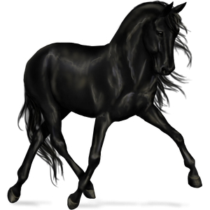 Riding Horse KWPN Mouse Gray