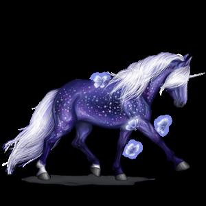 Unicorn pony Highland Pony Dapple Gray