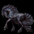Koń wierzchowy Knabstrup Tarantowaty leopard