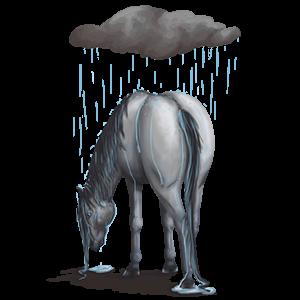 Пони Шетландский пони Кремелло