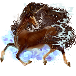 Riding unicorn Appaloosa Black Blanket