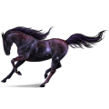 Riding Horse Holsteiner Light Grey