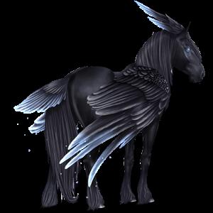 Pegasus Frieser Sort