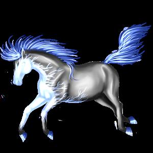 Pony Shetlander Zweetvos kastanje