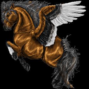 Jezdecký pegas Arabský plnokrevník Hnědý bělouš