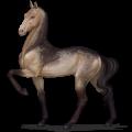 حصان ركوب حصان البنتو  رمادي أرقش أبقع