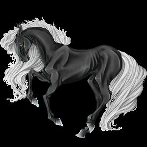 Cheval de selle Mustang Gris Souris