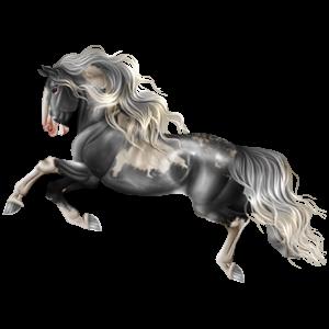 Cheval de selle Paint Horse Pie Tovero Noir