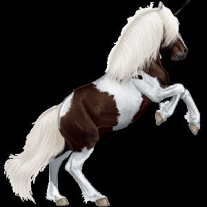 Unicorn pony Shetland Bay Tobiano