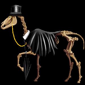 Koń wierzchowy Koń pełnej krwi angielskiej Kara