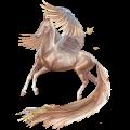 Pegasus KWPN Cremello