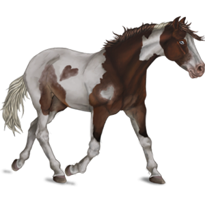 Pony Shetland Flaxen Chestnut