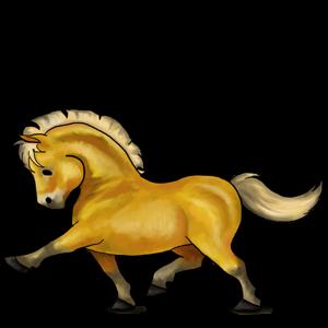Poník Shetlandský pony Černý ryzák Tobiano