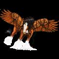 Winged riding unicorn Nokota Black