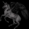 Licorne ailée Quarter Pony Pie Tobiano Bai Brûlé