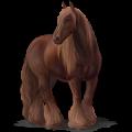 Trekpaard-pegasus Drum Horse Bruine Tobiano