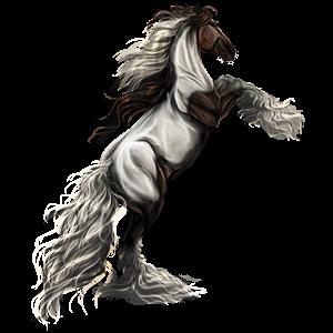 Pégase de selle Quarter Horse Noir