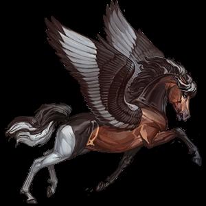 Riding pegasus Arabian Horse Dark Bay