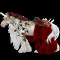 Licorne de selle Nokota Alezan