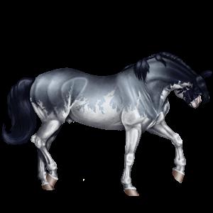 Pegaso da corsa Mustang Grigio Chiaro