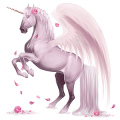 Winged riding unicorn KWPN Cremello