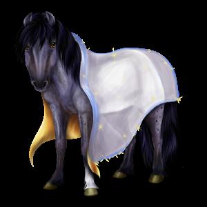 Pony Shetlandpony Cremello