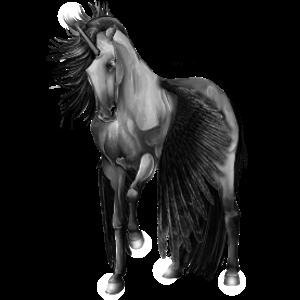 Gevleugelde pony-eenhoorn  Kerry Bog Zwart