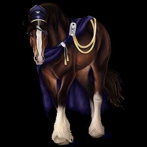 Draught horse Shire Black
