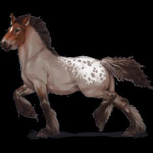 Draft Pegasus Drum Horse Black Tovero