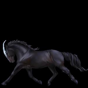 Licorne de selle Trakehner Noir