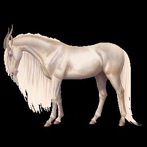 Верховой единорог Лошадь лузитанской породы Изабелловая