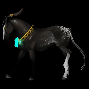 Einhorn-Reitpferd Araber Brauner