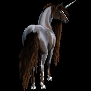 Riding unicorn Shagya Arabian Dapple Gray