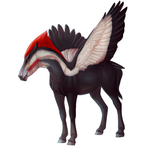 Jezdecký pegas Quarter Horse Hnědý bělouš