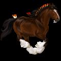 Trekpaard Shire Zwart