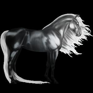 Jazdecký kôň Francúzsky klusák svetlý hnedák