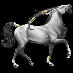 Unicornio de montar Pura raza española Gris ratón