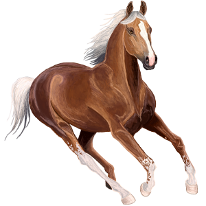 Ridehest Mustang Skimlet