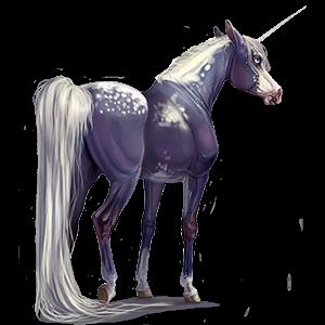 Riding unicorn Mustang Bay