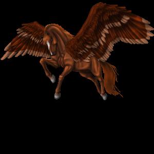 Riding pegasus Akhal-Teke Flaxen Liver chestnut
