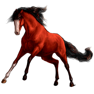 Riding Horse Barb Cherry bay