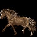 Riding Horse Selle Français Chestnut