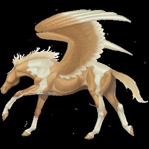Riding pegasus Paint Horse Palomino Overo