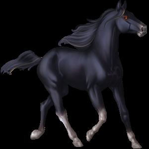Riding pegasus Mustang Black