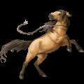 Rijpaard Mustang Bruin